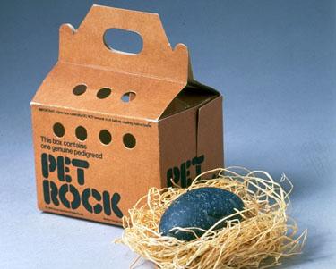Pet Rock Gamification