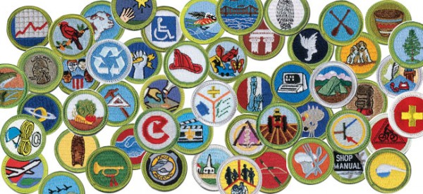 Points Badges and Leaderboard- Image of Boy Scout Merit Badges