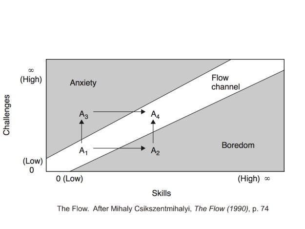 Flow Theory