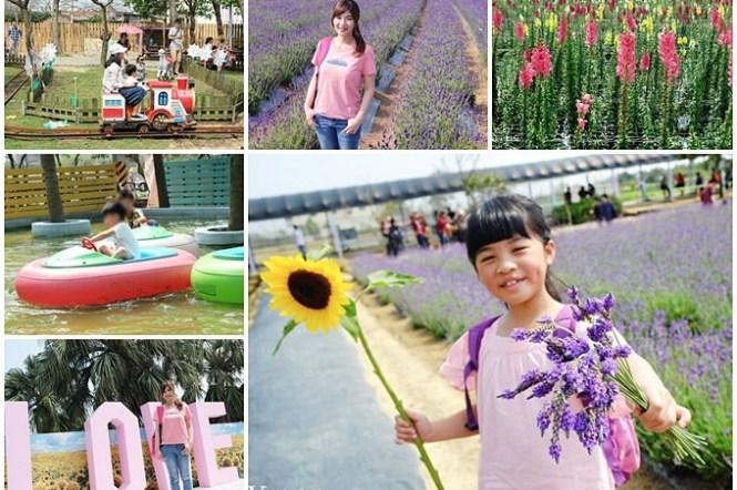 桃園景點【向陽農場】親子景點~薰衣草、向日葵、金魚草超美花海×兒童遊樂設施×餵羊咩咩