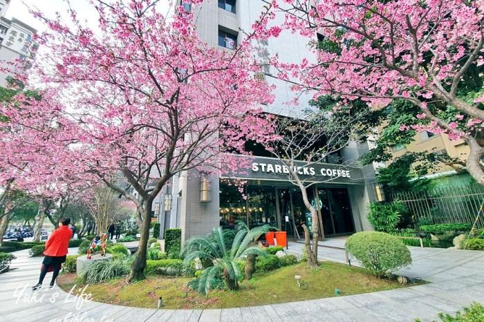 粉嫩櫻花美景喝咖啡「林口星巴克」限定粉紅浪漫~現在正美!