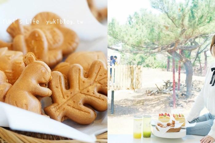 新竹美食【森林食堂】小動物雞蛋糕×吃美食看動物~親子友善餐廳也適合約會美拍