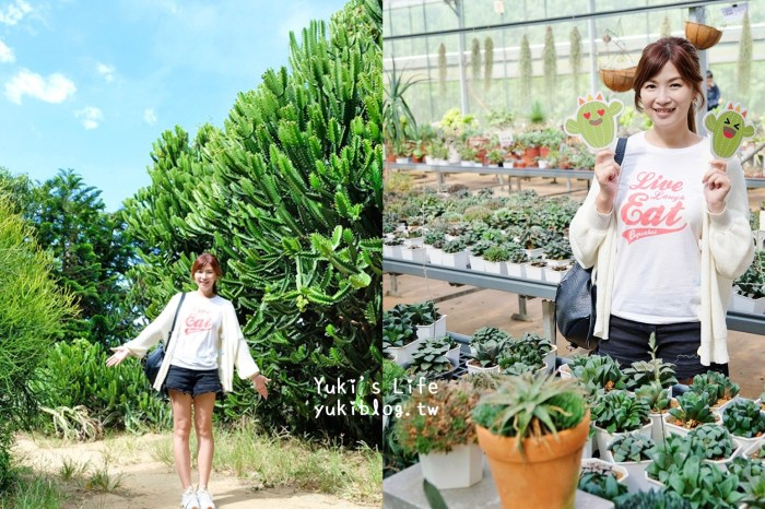 新竹新埔景點【福祥仙人掌與多肉植物園】多肉植物的環遊世界之旅~免費逛