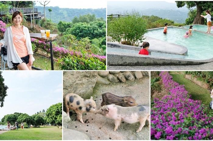 台南景點【仙湖休閒農場】親子一日遊~無邊際戲水池、小動物、約會、草皮景觀餐廳、住宿