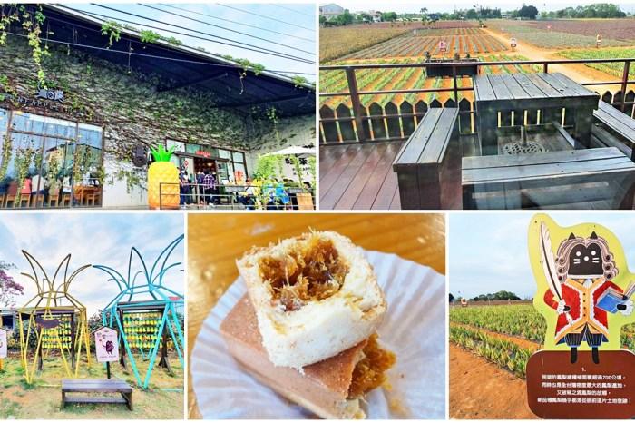 嘉義景點》旺萊山鳳梨文化園區,鳳梨酥請你吃!免門票觀光工廠親子景點~