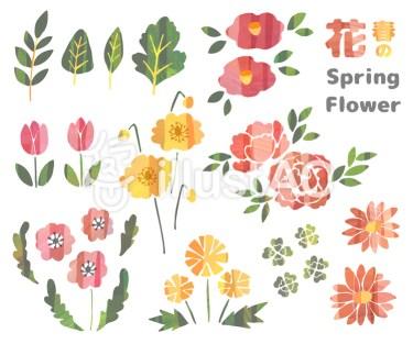 水彩 春の花