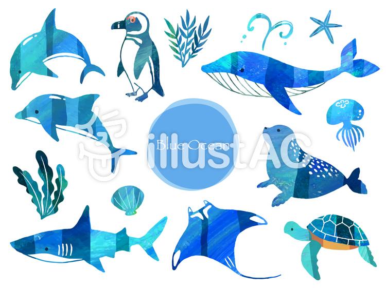イラストAC 無料イラスト 海 生き物