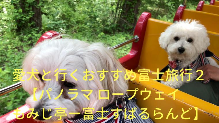 愛犬と行くおすすめ富士旅行1【富士山モフモフサミットーぐりんぱ】 アイキャッチ