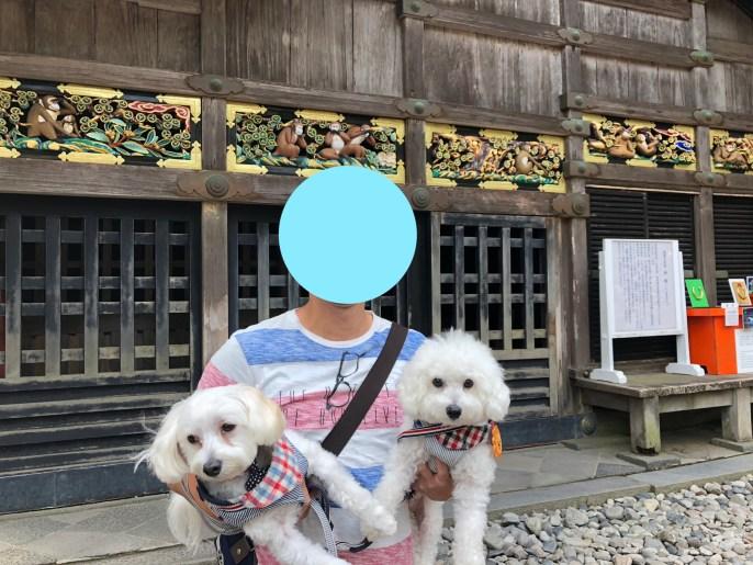 【日光東照宮】犬と行ける1度は行くべき世界文化遺産 三猿