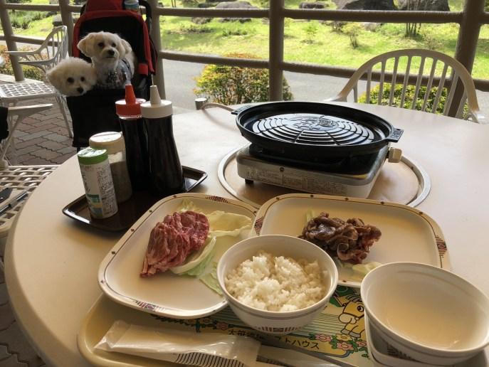 【日光】【大笹牧場】犬と美味しい食事が食べられる牧場 ジンギスカン