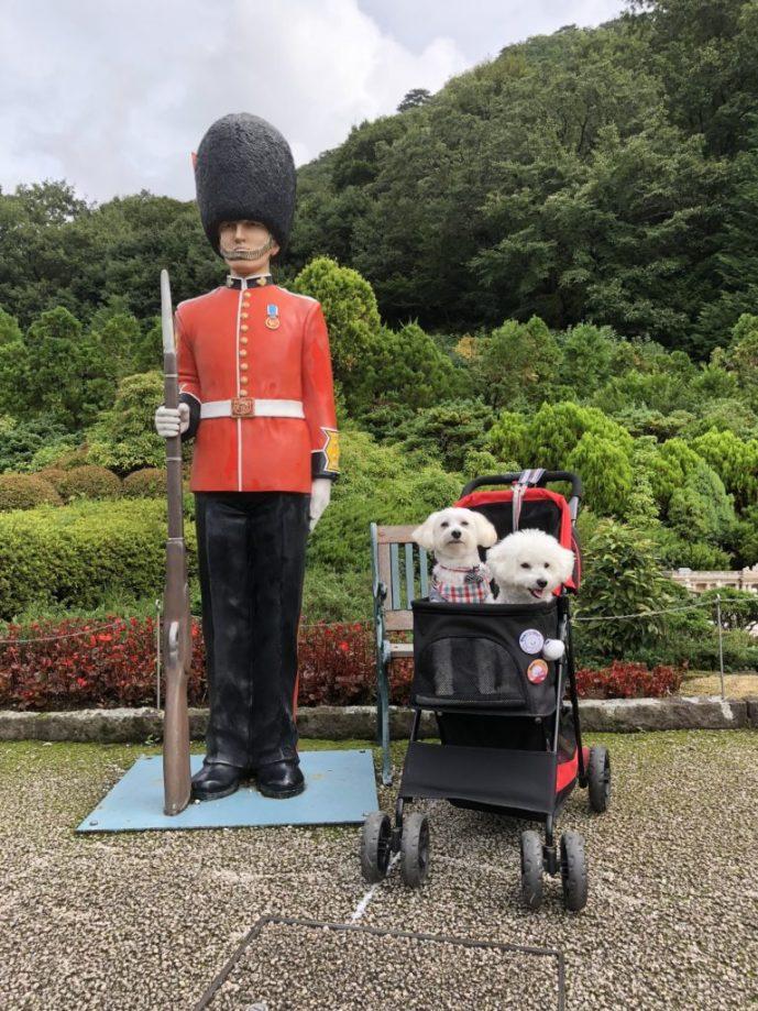 【東武ワールドスクウェア】で犬と一緒に世界を回ろう【日光】 兵隊