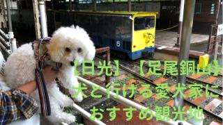 【日光】【足尾銅山】犬と一緒に行ける歴史的施設 アイキャッチ