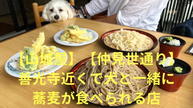 【山城屋】善光寺近くで犬と一緒に蕎麦が食べられる店【仲見世通り】 アイキャッチ