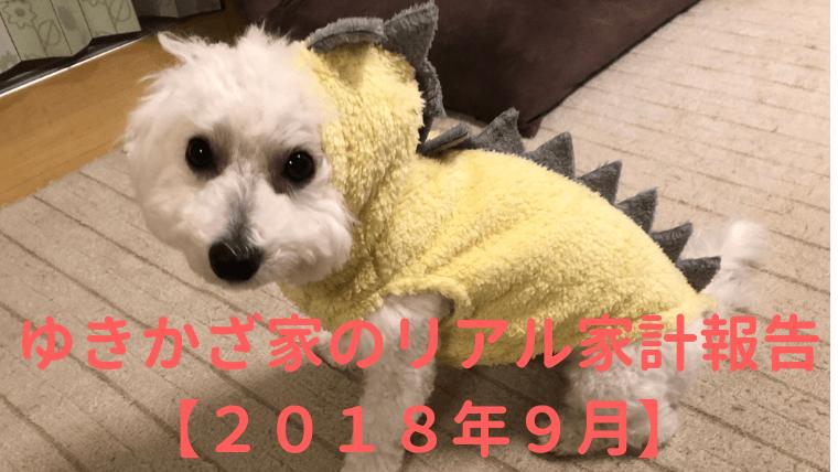 ゆきかざ家のリアル家計報告【2018年9月】 アイキャッチ