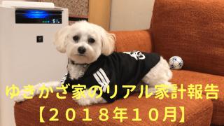 ゆきかざ家のリアル家計報告【2018年10月】 アイキャッチ