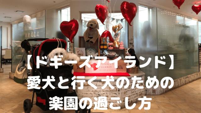 【ドギーズアイランド】 愛犬と行く犬のための 楽園の過ごし方 アイキャッチ