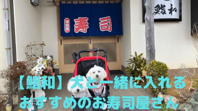【鮨和】犬と一緒に入れる おすすめのお寿司屋さん アイキャッチ