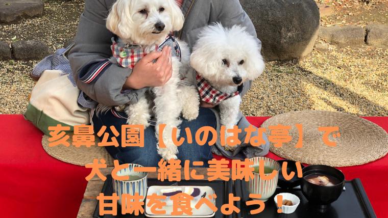 亥鼻公園の【いのはな亭】で犬と一緒に美味しい甘味を食べよう! アイキャッチ