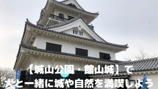 【城山公園・館山城】で 犬と一緒に城や自然を満喫しよう アイキャッチ
