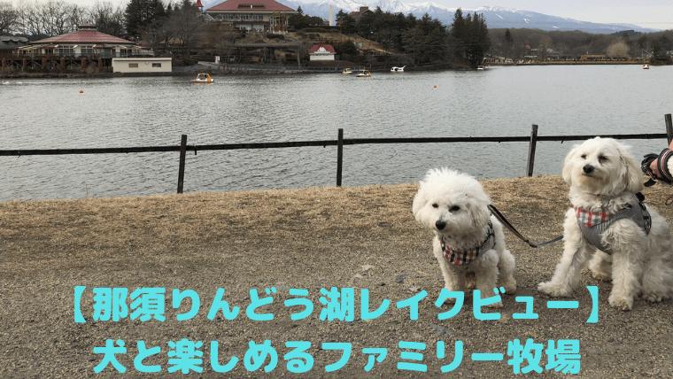 【那須りんどう湖レイクビュー】犬と楽しめるファミリー牧場 アイキャッチ