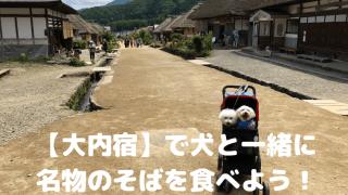 【大内宿】で犬と一緒に名物の蕎麦を食べよう!【福島】 アイキャッチ
