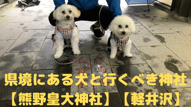 【熊野皇大神社】県境にある 犬と行くべき神社【軽井沢】 アイキャッチ