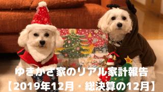 ゆきかざ家のリアル家計報告【2019年12月・総決算の12月】 アイキャッチ