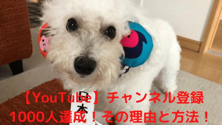 【YouTube】チャンネル登録1000人達成!その理由と方法! アイキャッチ