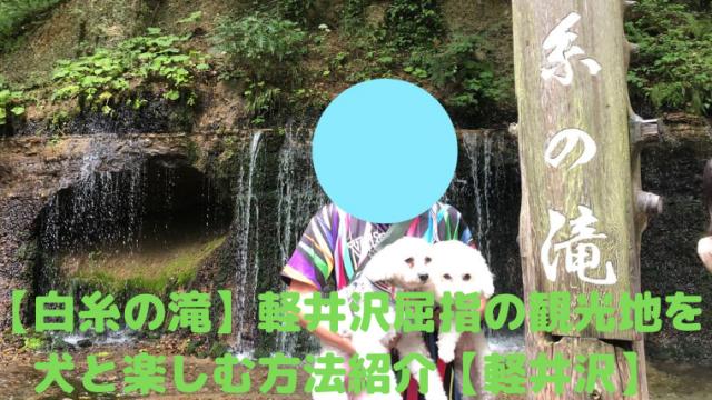 【白糸の滝】軽井沢屈指の観光地を犬と楽しむ方法紹介【軽井沢】 アイキャッチ