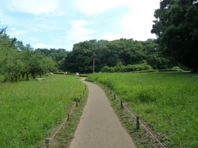 ibaraki-kai04