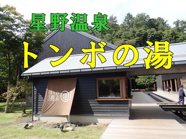 トンボの湯(星野温泉)~割引、口コミ、軽井沢日帰り温泉マップ~