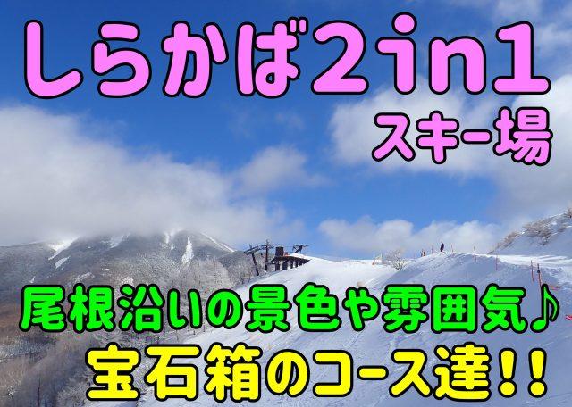 しらかば2in1スキー場。尾根沿いの景色や雰囲気♪宝石箱のコース達⛄