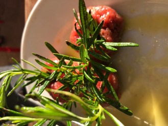 タルタルとワイルドなローズマリー