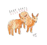 goats_lores