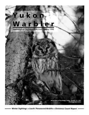 Yukon Warbler Spring 1998