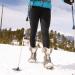 PP-Trek Lite Poles by Yukon Charlie's 2