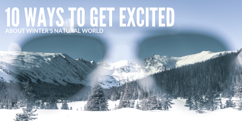 10 Ways to get excited about winter