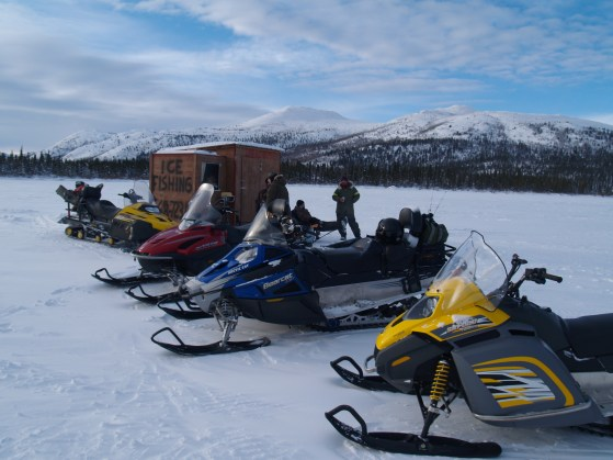 promenade en motoneige au Yukon