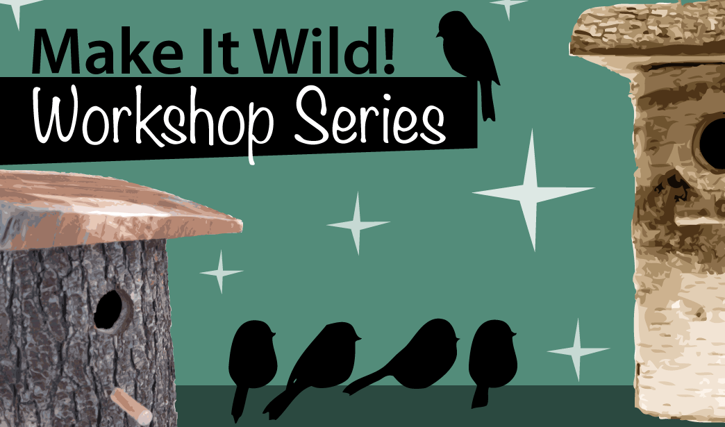 Make it Wild – Bird boxes!
