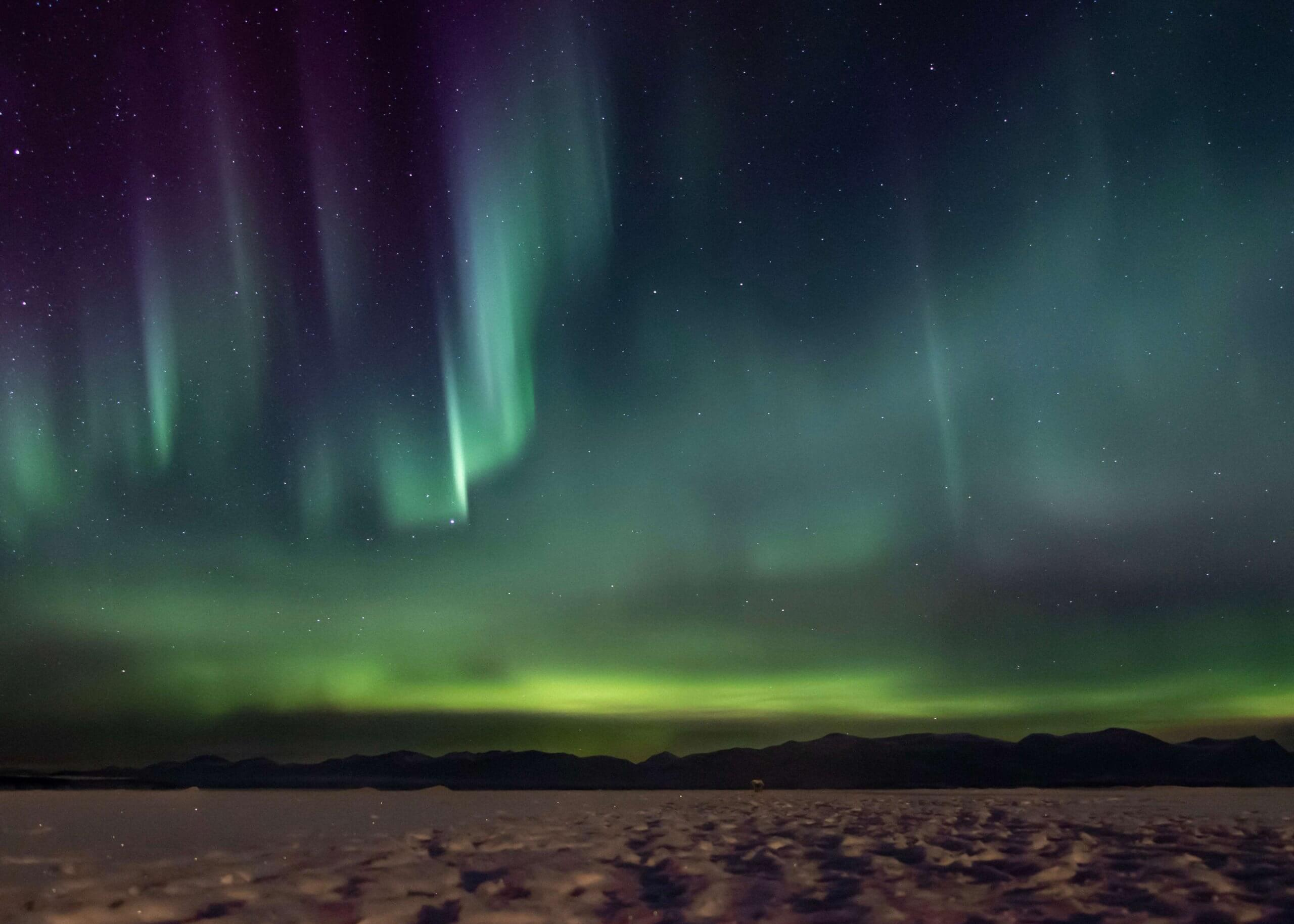 Shades of green and purple northern lights soar through the sky over Kluane Lake, Yukon