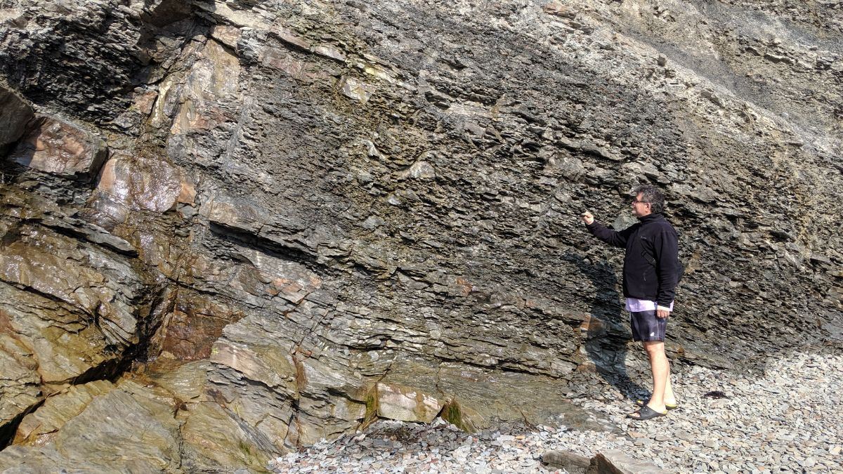 Fort Beausejour and Joggins Fossil Cliffs - https://yula.ca