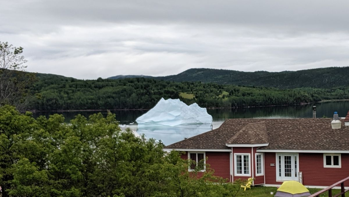 Icebergs Airplanes Lighthouse and Moose! - http://yula.ca