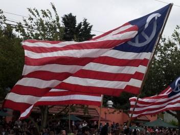 Peace flag up close.