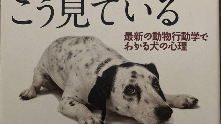 【不思議な犬の世界】犬はあなたをこう見ている ジョン・ブラッドショー