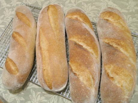Loaves May 29, 2008