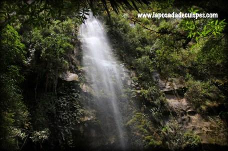 yumbilla-falls-cuispes-chachapoyas-peru-waterfalls-021
