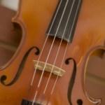 バイオリンを見る
