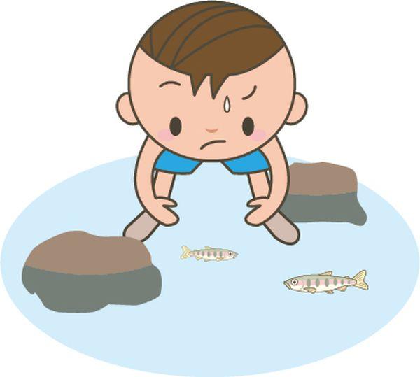 魚を捕まえる