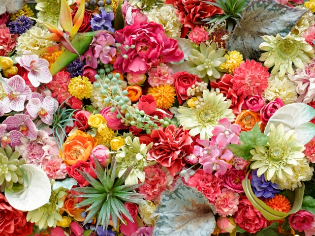 活気のある明るいイメージの花屋