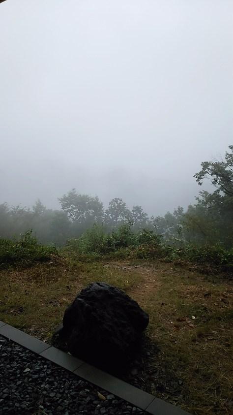 雨に煙る仙元山